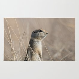 Richardson Ground Squirrel Rug