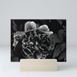 Black And White Flower Mini Art Print