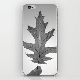 Light Leaf 2 iPhone Skin
