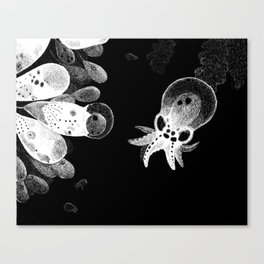 The Beginning Canvas Print