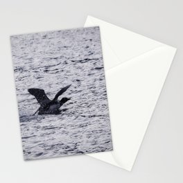 Loon Landing Stationery Cards
