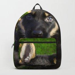 Little German Shepherd puppy Backpack