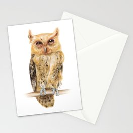 Animals | Owl Watercolour Print | Philippine Scops Owl | Painting Stationery Cards