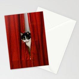 Peek-A-Boo Tuxedo Kitty Stationery Cards
