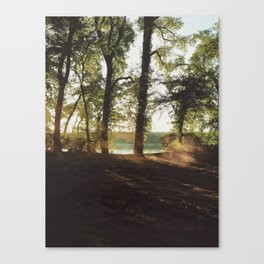 Capturing the sun Canvas Print