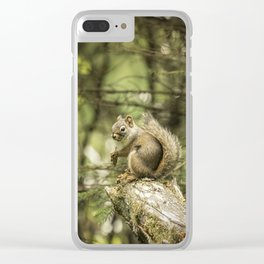 Who You Calling Squirrelly? Clear iPhone Case