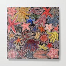 Sea stars and starfish Metal Print