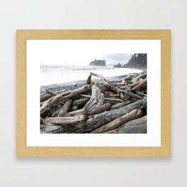 Stormy Ruby Beach Framed Art Print