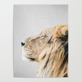 Lion Portrait - Colorful Poster