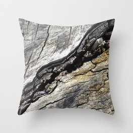 Fissure Throw Pillow