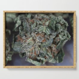 Master Kush Medical Marijuana Serving Tray