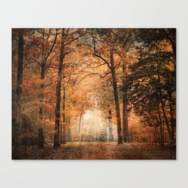 Clearing Canvas Print