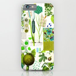 Green Botanical by Pam Smilow iPhone Case