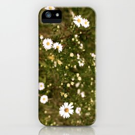 The Hollows iPhone Case