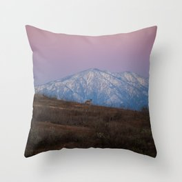 Coyote Mountain Throw Pillow