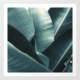 Tropic Lush Art Print