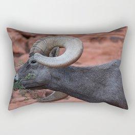 Breakfast - Valley of Fire Resident Rectangular Pillow