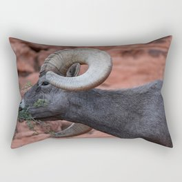 Breakfast - Valley of Fire Resident Rectangular Pillow