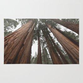 Sky Climbers - Sequoia Rug