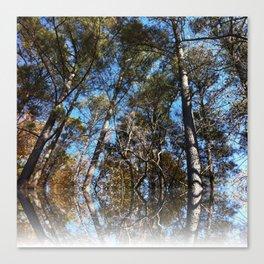 a view through the trees Canvas Print