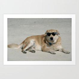 Sup Dog Art Print