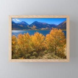 Aspen on Twin Lakes, Colorado Framed Mini Art Print