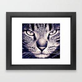 Louie Framed Art Print