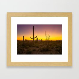 Spirit of the Southwest - Saguaro Cactus and Desert Plant Life in Warm Glow of Arizona Sunset Framed Art Print