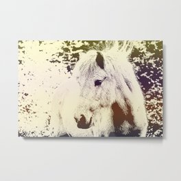 Colored Pony Metal Print