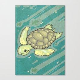 Tortuga! Canvas Print