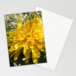 Spring Over Time Stationery Cards