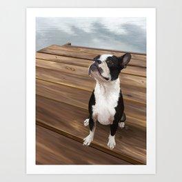 Boston Terrier 1 Art Print