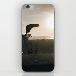 dust iPhone Skin