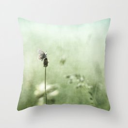 Hard to find.... Throw Pillow