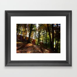 The woods are lovely Framed Art Print