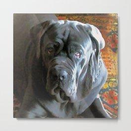 My dog Ovelix! Metal Print