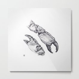 Claws Metal Print