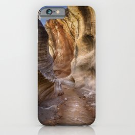 Willis Creek iPhone Case