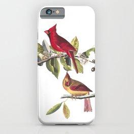 Cardinal grosbeak, Birds of America, Audubon Plate 159 iPhone Case