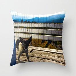 Sparky the dog Throw Pillow
