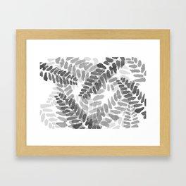 Mimosa Lof Framed Art Print