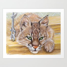 Shamrock Bobcat swing Art Print
