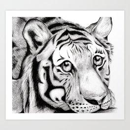 Playful Tiger Art Print
