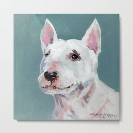 Mini Bull Terrier Metal Print