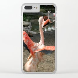 Chilean Flamingo Clear iPhone Case