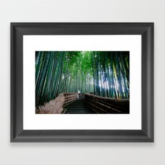 Serendipity In Kyoto Framed Art Print