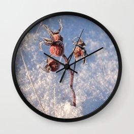 Snow Growth Wall Clock