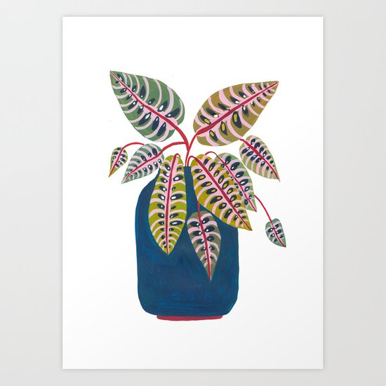 Potted Prayer Plant by amberstextiles