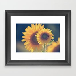 Sunflower 02 Framed Art Print
