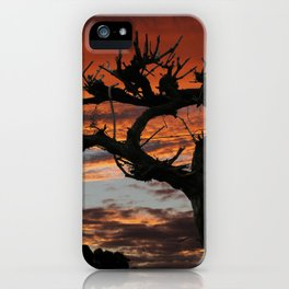 The Vines in Winter iPhone Case